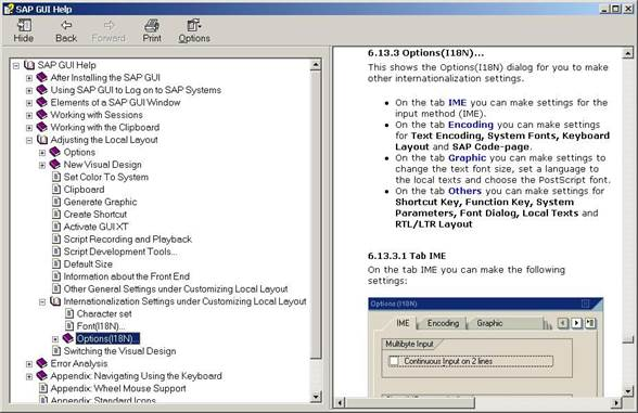 SAPGUI for Windows - I18N User's Guide -